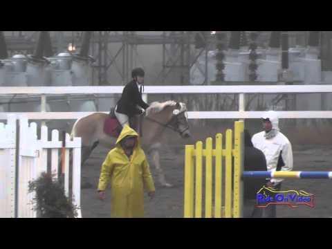 227S Melissa Groom On Wiesenblume Intro Show Jumping FCHP November 2015