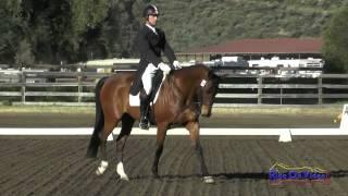 019D James Atkinson on Nabouco De Lessay CIC2* Dressage Galway Downs International March 2015