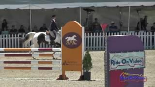 324S Maya Mulleneaux on Jackson Bieber JR Beginner Novice Show Jumping Woodside May 2017
