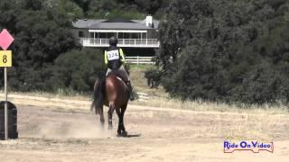 324XC Jennifer Wang On Biggie Smalls SR Beginner Novice Cross Country Woodside August 2015