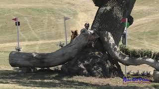 050XC Jadyn Gooch on Boolagh Brigadier Training Rider Cross Country Shepherd Ranch June 2021