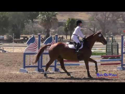 360S Kayleigh Dayka On 44 Magnum Beginner Novice CH Show Jumping Twin Rivers Ranch Sept. 2016