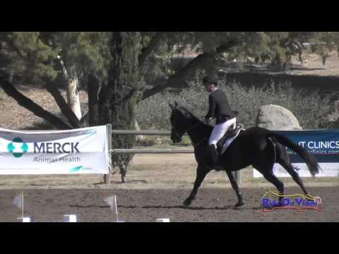 107S Sara Sellmer On Sloan McQuick CCI1* Show Jumping Galway Downs November 2015