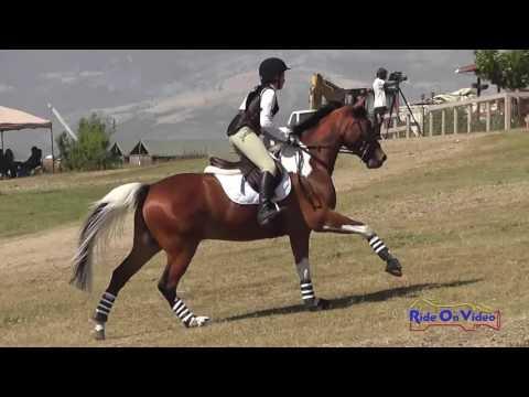 167XC Kai Doulton On Brutus Maximus JR Intro Cross Country Shepherd Ranch June 2016
