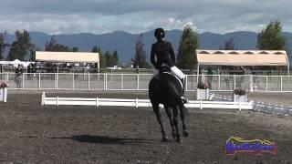 355D Carmen Holmes Smith on Digby JR Training Dressage The Event at Rebecca Farm July 2014