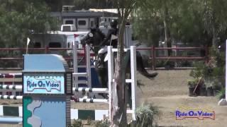 202S Mia Farley on Just a Mystery Open Novice Show Jumping Copper Meadows June 2014