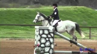 128S Emma Gray JR Training Rider Stadium Jumping Twin Rivers Ranch March 2013