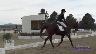315D Ester Cobb on Clifford Beginner Novice Amateur Dressage USEA AEC August 2018