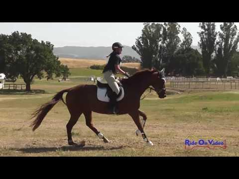 172XC Halina Thole On Mr Quigley JR Intro Cross Country Shepherd Ranch June 2016