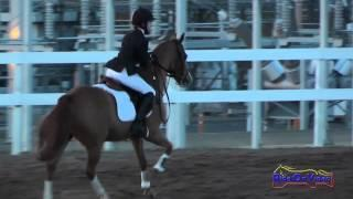 219S Katherine Papahadjopoulos on Maradona Intro Show Jumping FCHP November 2014
