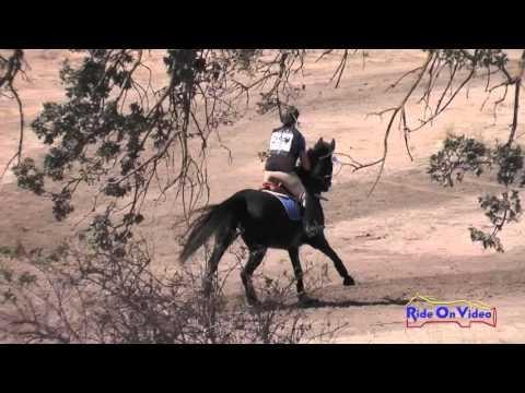 287XC Toora Nolan On Obsidian Open Beginner Novice Cross Country Twin Rivers Sept 2015