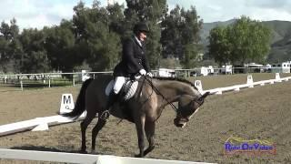 433 2 Denise Nelson Finster on Rococo Chanel 2015 First Level Test 1