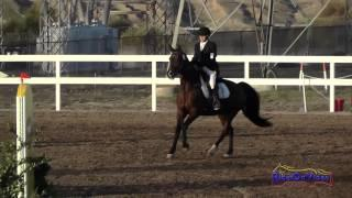 205S Lizzy Novotny on Suprise Mi Intro Show Jumping FCHP November 2014
