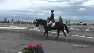 222D James Atkinson on Pinotage SR Training Dressage The Event at Rebecca Farm July 2014
