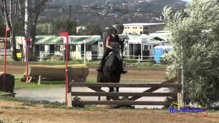 212XC Kate Chester on Orca SR Novice Cross Country Copper Meadows March 2015