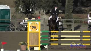 088S Jordan Linstedt on Revitavet Capato CCI3* Show Jumping Galway Downs November 2014