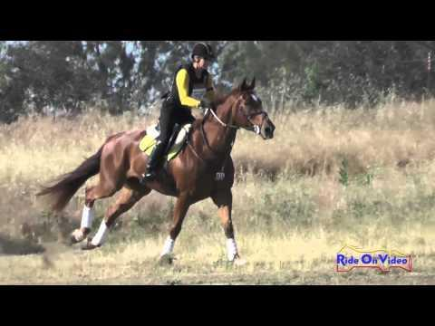 035XC Tristen Hooks On Learning To Fly Preliminary Rider Cross Country FCHP April 2016