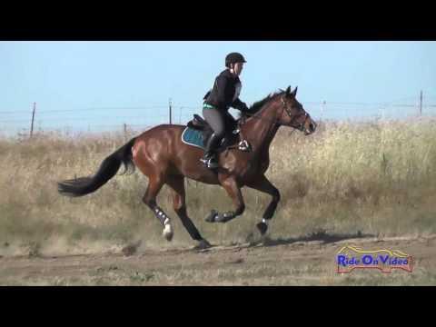 036XC Theresa Smrt On Landmark Preliminary Rider Cross Country FCHP April 2016