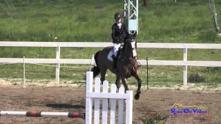 077S Kimmy Steinbuch on Spartacus D'L'Herbage Open Preliminary Show Jumping FCHP February 2015