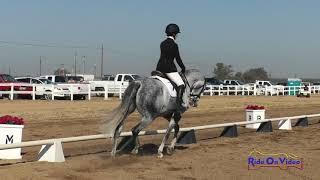 174D Carrie Finno on Carte Blanche Open Beginner Novice Dressage FCHP October 2018