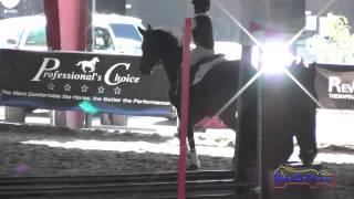 041J Elise Duke on Shirley Temple Intro Jumping Pacific Indoor Eventing October 2014