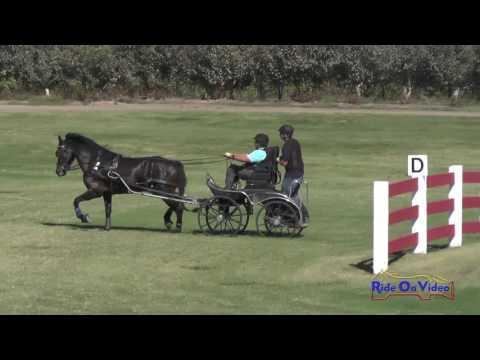 025M Diana Kastama Advanced Single Horse Marathon Shady Oaks September 2016