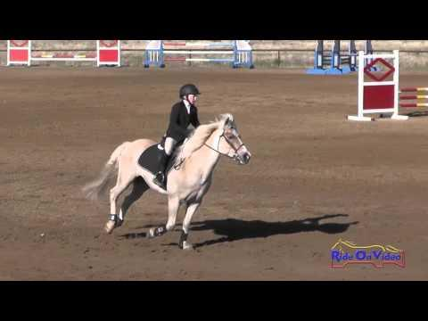 466S Gabriella Ringer On Puddles JR Beginner Novice Show Jumping Twin Rivers Ranch April 2016