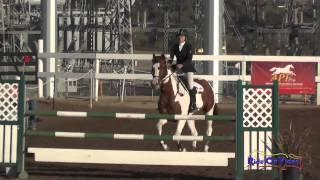 003S Nikki Ayers on Rubicon Intermediate Show Jumping Fresno County Horse Park Oct 2014