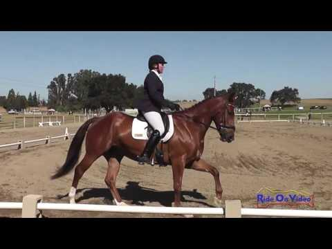 014D Madeline Sexton On Celtic Star Open Preliminary Dressage Shepherd Ranch June 2016