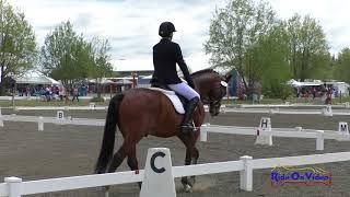 012D Louise LaRue on Cassian TH Open Intro Dressage Spokane HT May 2018