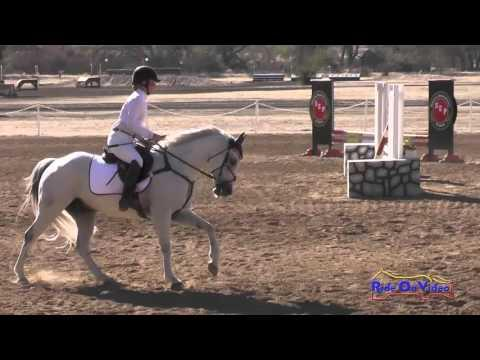 294S Hannah Bailey On Cloud Nine Intro Show Jumping Twin Rivers Sept 2015