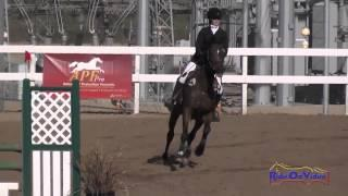 059S Lexi Vallier on Shane's Friend YR Training Show Jumping Fresno County Horse Park Oct 2014
