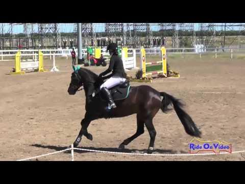 023S Kathryn Canario On Ringwood Little Imp Preliminary Rider Show Jumping FCHP April 2016