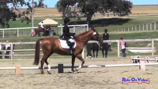 095D Grace Campion on Spell Check Junior Intro Dressage Shepherd Ranch August 2014