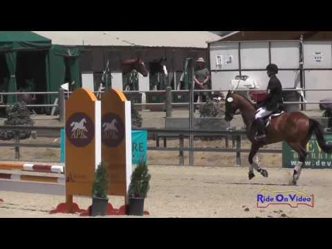 272S Lorenzo Sampson On So Shine JR Beginner Novice Show Jumping Woodside August 2016
