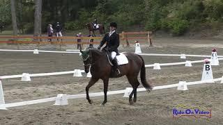 081D Elizabeth Linde on Pie and Ice Cream Open Preliminary Dressage Aspen Farms Sept. 2018