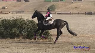 177XC Cassidy Burke on Pride JR Intro Cross Country FCHP November 2018