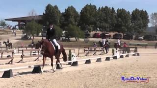 337D Sarah Smith on Street Melody JR Beginner Novice Dressage Woodside May 2014
