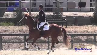 127S David Adamo on Liam's Bonnie Lass Open Training Show Jumping Woodside August 2014