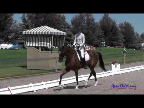 590D Kelsey Horn On Tomlong Ratatouille YEH 5yr Old Dressage The Event At Rebecca Farm July 2015