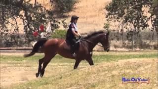 113XC Alexandra Terlesky JR Novice Rider Cross Country Shepherd Ranch June 2013