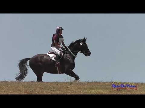 138XC Tracy Alves On Duke HW Open Beginner Novice Cross Country Shepherd Ranch June 2016