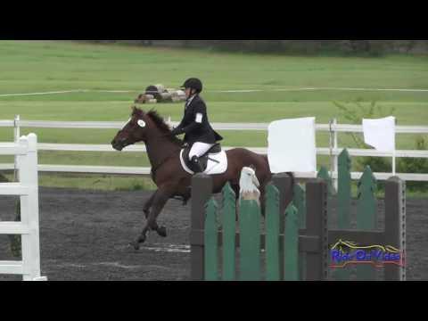 058S Daryn Tinsley Open Beginner Novice Show Jumping Spokane Sport Horse HT May 2016