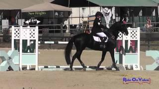 033S Chantale Vachon on Penmerryl's Maximus CIC1* Show Jumping Woodside Int'l Event Oct 2014