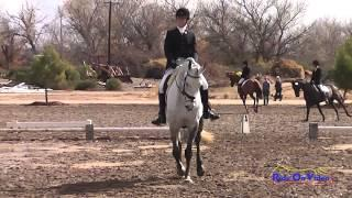 101D Kelsey Holmes on NZB The Chosen One Preliminary Dressage Twin Rivers Ranch Feb 2014