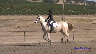 333S Ava Torres on WKD Lad Intro Show Jumping Twin Rivers Ranch Sept. 2019