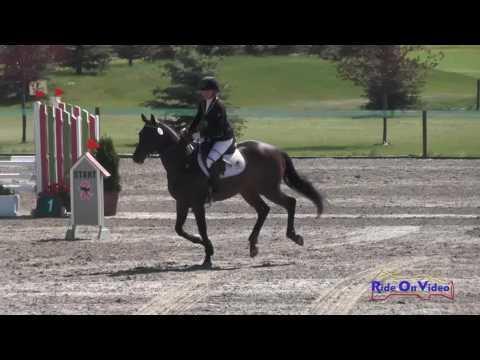 291S Kathryn McKinstry On Ogopogo SR Open Training Show Jumping Rebecca Farm July 2016