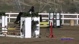 233S Amanda Fisher on HS Balou Open Novice Show Jumping FCHP November 2014