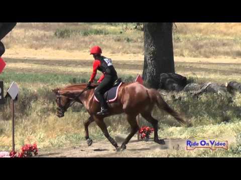 398XC Jennifer Monson On Apple Jax SR Beginner Novice Cross Country Twin Rivers Ranch April 2016