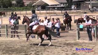 083S Claire Smith on Annie Oakley III Junior Beginner Novice Stadium Shepherd Ranch August 2014